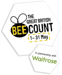 great-british-bee-count-logo-waitrose